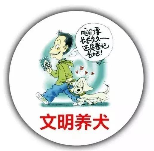 石家庄市民可在线办理电子犬证  与卡式犬证法律效力等同