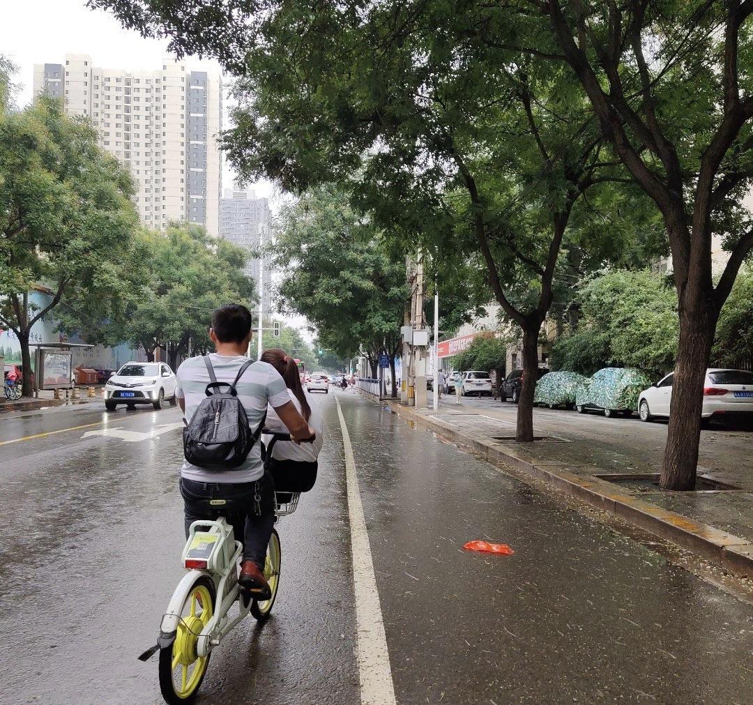 爆料:石家庄共享单车原来是这样骑的!
