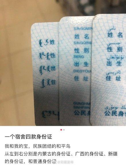 一个宿舍四款身份证